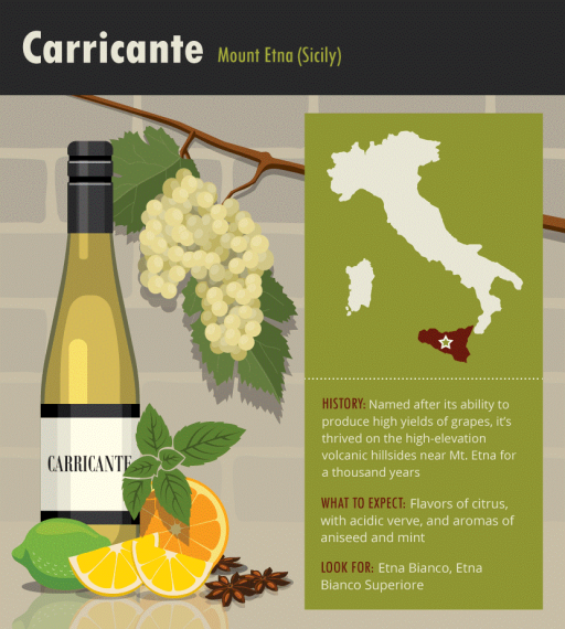 Carricante-Italian-white-wine-grape-varieties-infographic.png