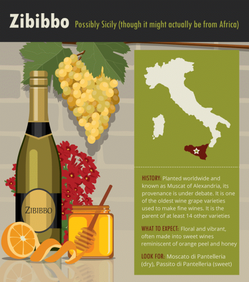 Zibibbo-Italian-white-wine-grape-varieties-infographic.png