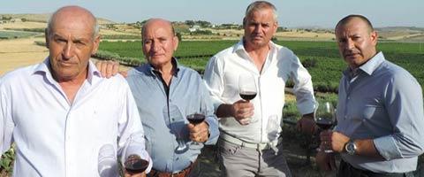 azienda-vitivinicola-lombardo-01