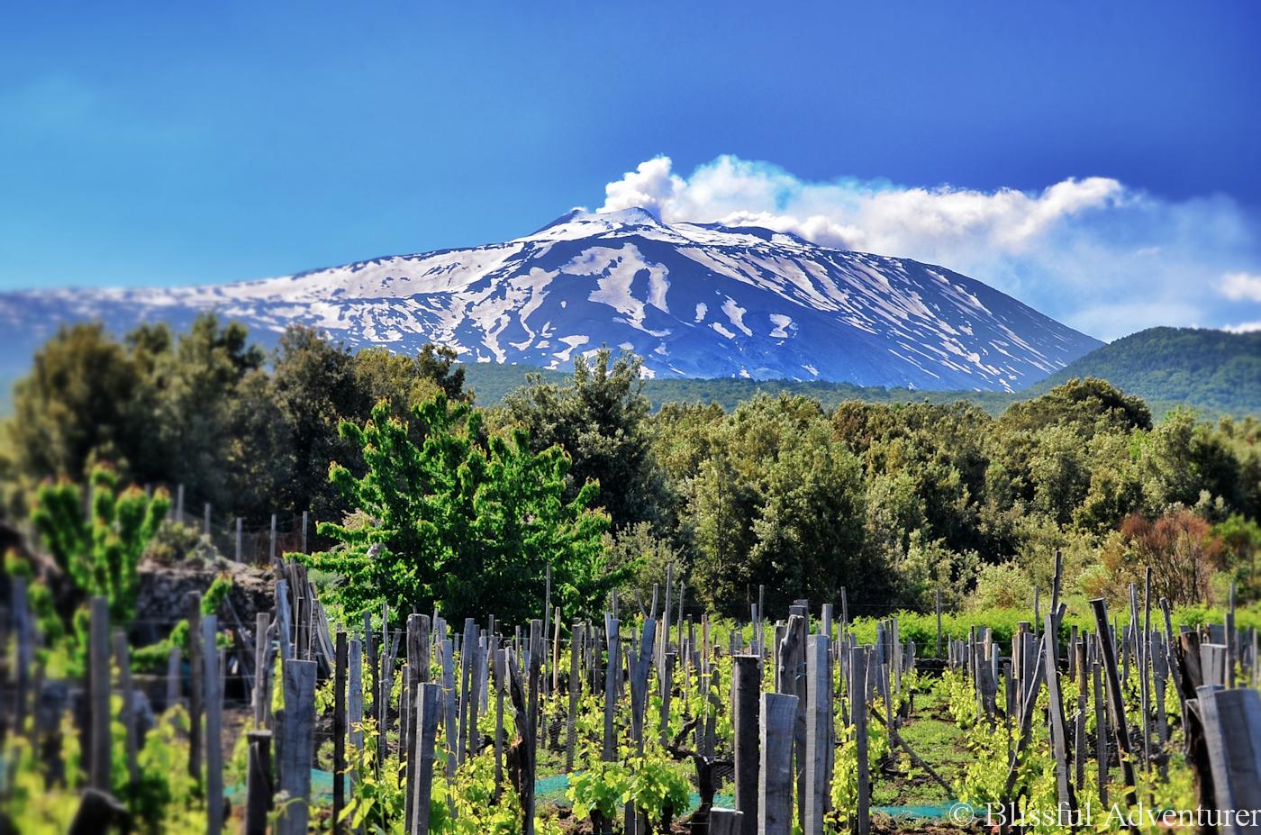Spumanti dell'Etna: un vulcano di bollicine!
